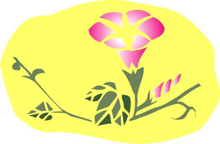 Bindweed background with Imagens