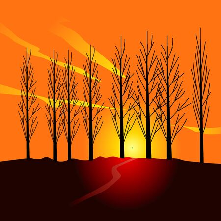 treelined: Poplar tree-lined evening