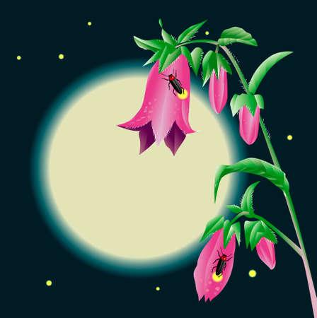 bellflower: Bellflower and the moon