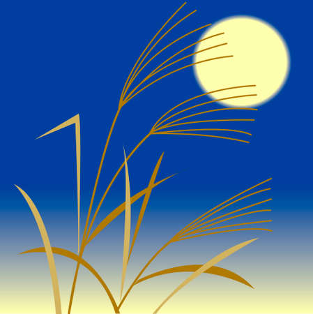 silver grass: Mid-Autumn harvest moon and silver grass