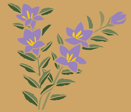 campanula: Bellflower background with