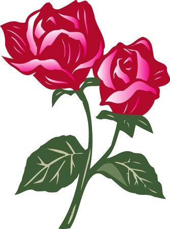 rosas rojas: Rosas rojas