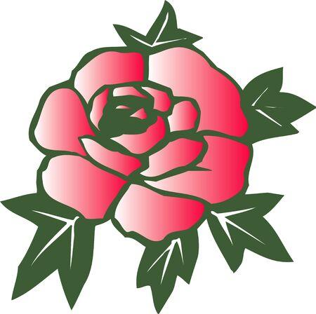 rosas rojas: Red roses Foto de archivo