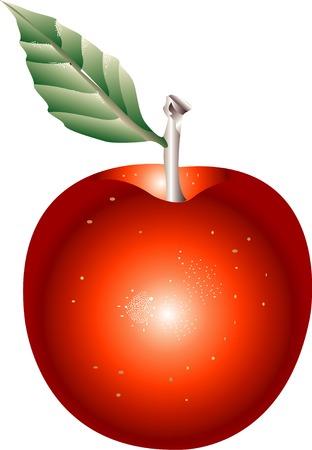 provisions: Apple
