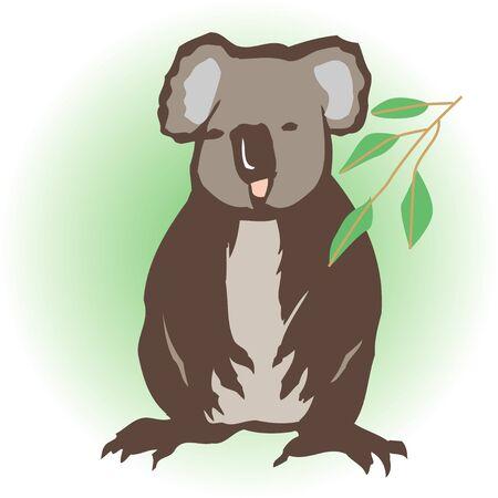 mammalian: Koala