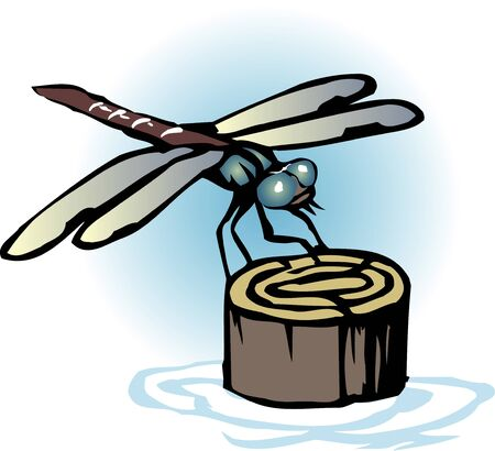 living thing: Dragonfly