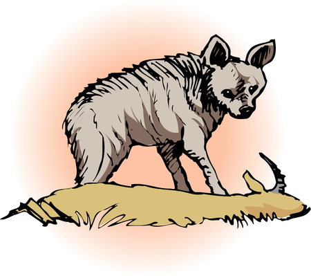 mammalian: Hyena
