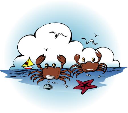 seawater: Crab