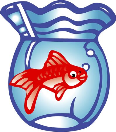 fishbowl: Goldfish, Carassius auratus Stock Photo