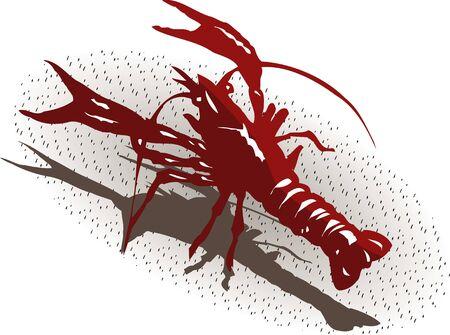 crayfish: crayfish