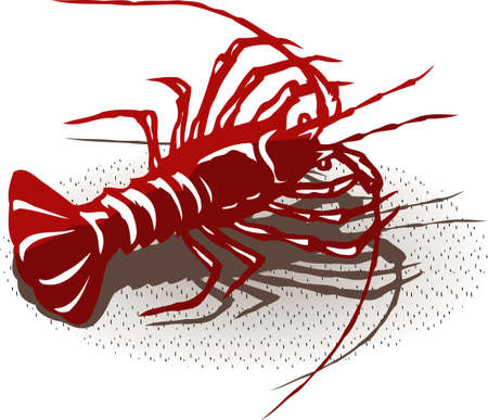 seawater: Lobster