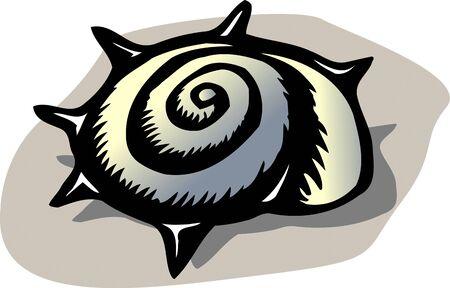 shellfish: Tsunokai