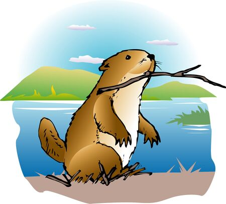 mammalian: Beaver