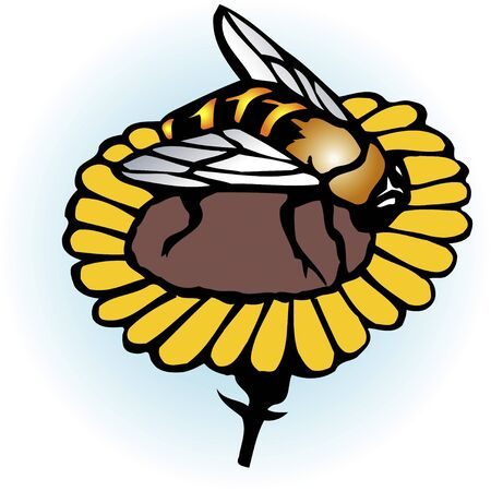 living organism: Honey bees