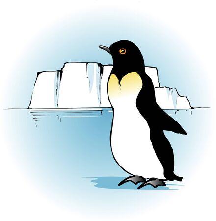living organism: Penguin