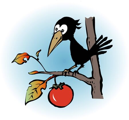 living organisms: Crow Stock Photo