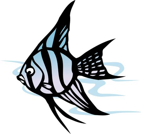 living organism: Tropical fish Stock Photo