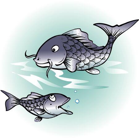 living organism: Fish Stock Photo