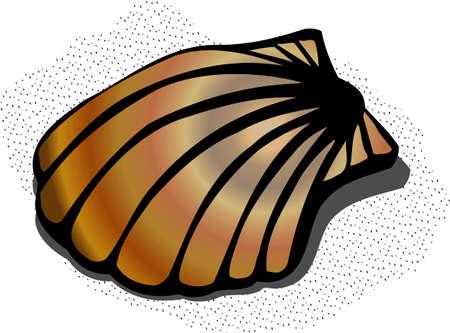 Shell 版權商用圖片