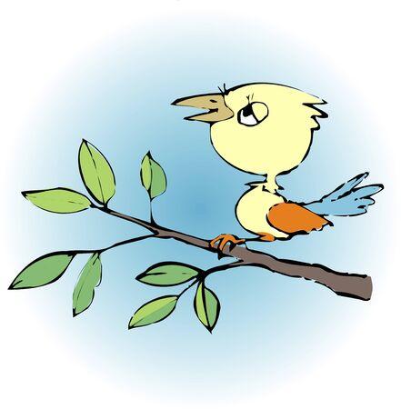 living organism: Birds