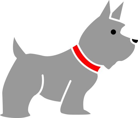 mammalia: Dog