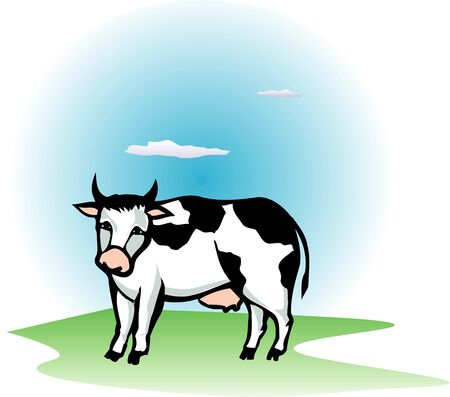 living organism: Holstein