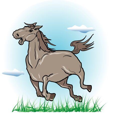 mare: Equine