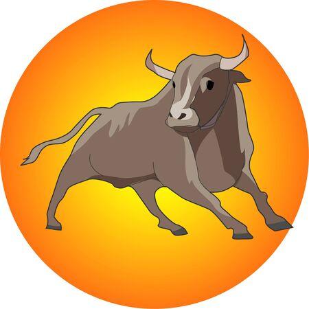 bullfighting: Bullfighting