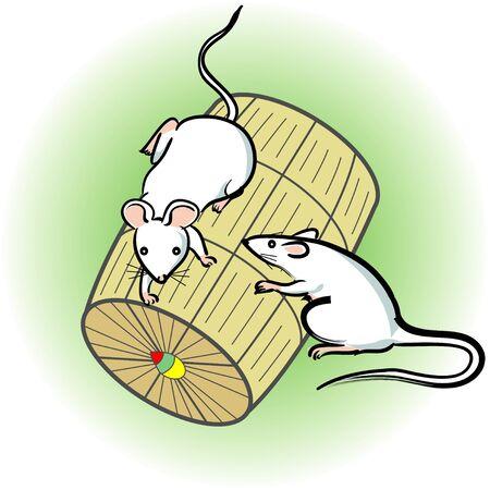 bales: Bales Mouse