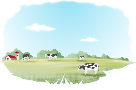 grazing land: Ranch Stock Photo