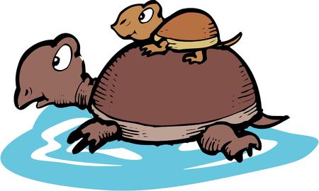 omen: OyaKameko turtle