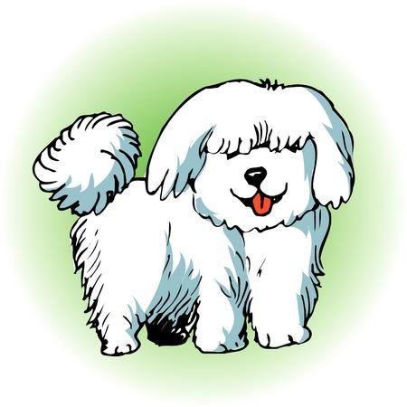 carnivora: Dogs