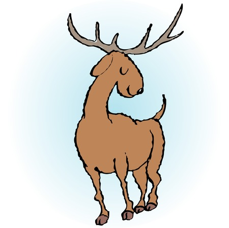 living organism: Deer