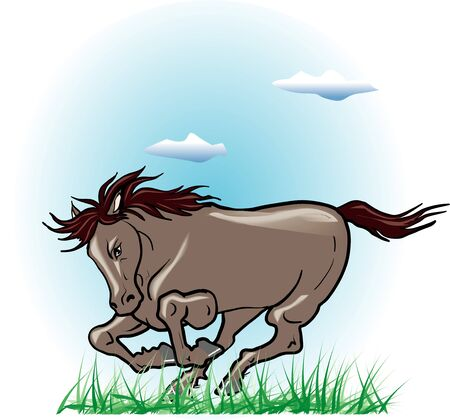 living organism: Equine