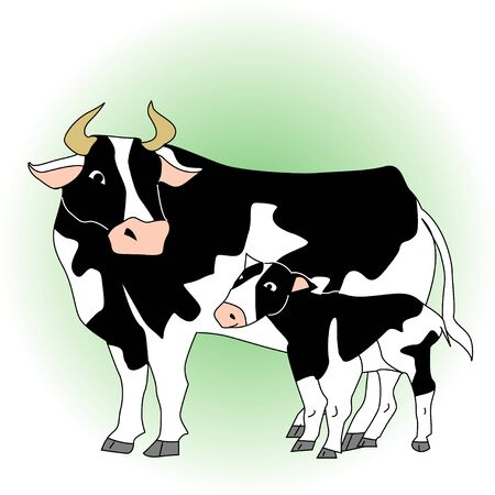 holstein: Holstein parent and child