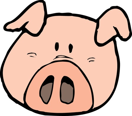 mammalia: Pig