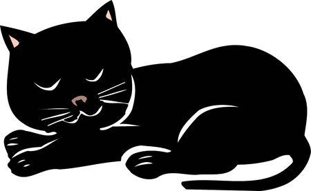 mammalian: Black cat