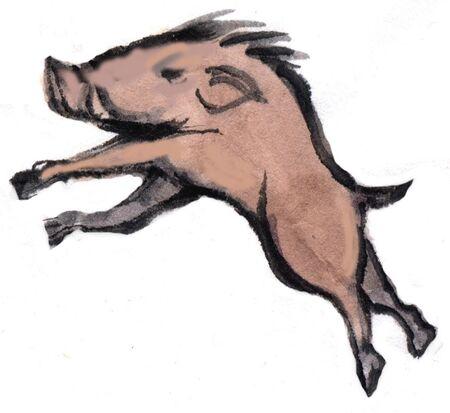 mammalian: Wild boar