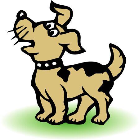mammalia: Dogs
