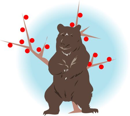 mammalia: Bear