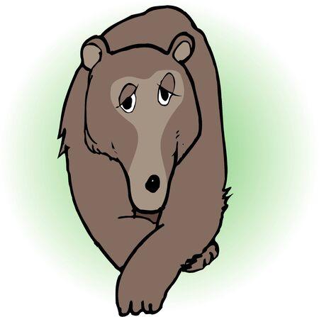 living organism: Bear