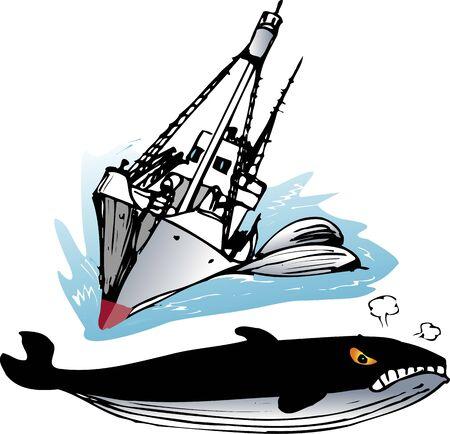 Catcher boat