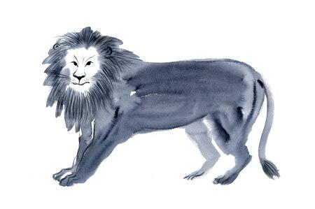 manes: Lion Stock Photo