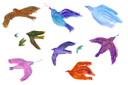bird fly: Bird Stock Photo