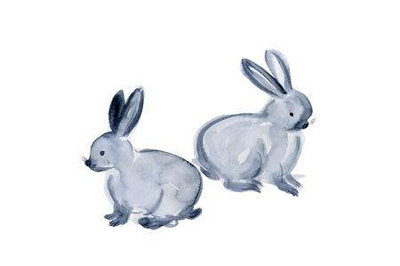 living organism: Rabbit
