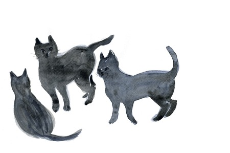 living organism: CAT