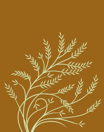 birthplace: Plant pattern