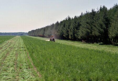 great plains: Tokachi farm Stock Photo