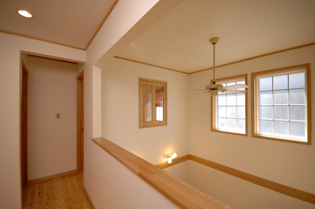 new construction: Vaulted ceiling and fan