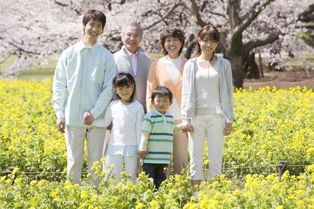 sakura: Third-generation family portrait. Stock Photo